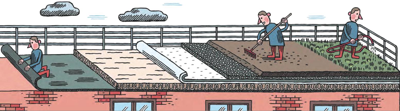 N 591 Toitures Terrasses Une Etancheite A Soigner